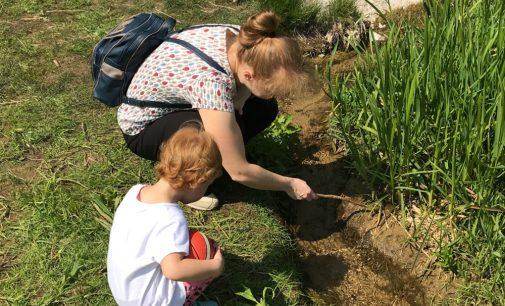 Mūsų vaikams labiau reikalingi įspūdžiai, o ne žaislai ir išmanūs įrenginiai