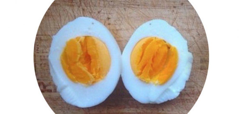 Baltymas ir metabolizmas