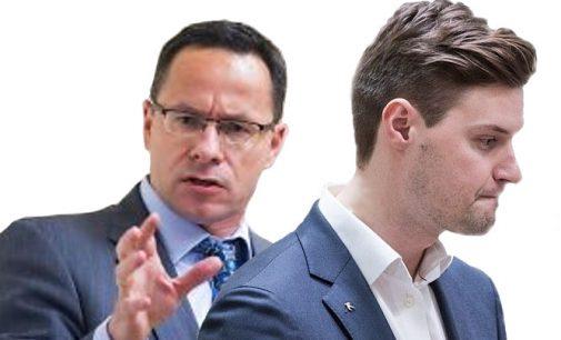 Seimo konservatoriai siūlo užsienio lietuviams  numatyti ne vieną, o dvi vienmandates balsavimo apygardas