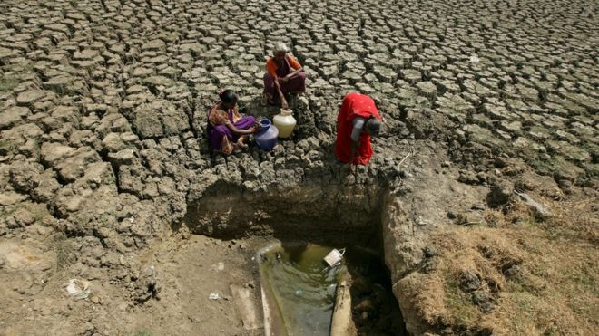 Suskeldėjusi nuo sausros žemė, vandens likučiai