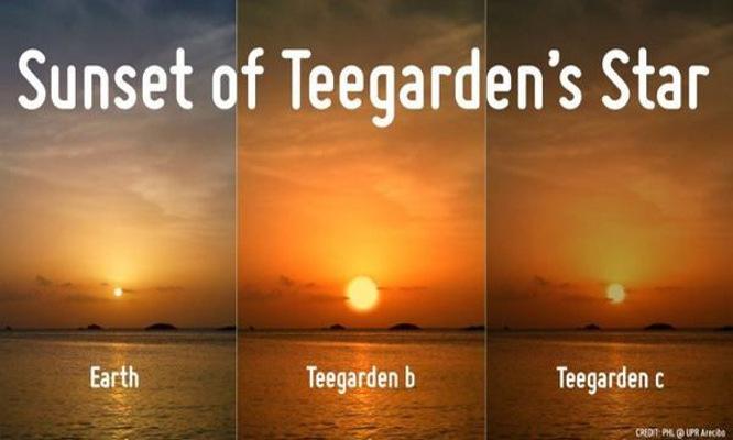 Žemės ir Teegarden planetų palyginimai