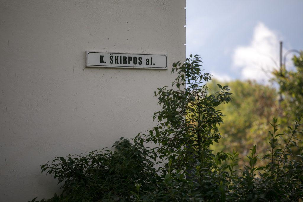 Kazio Škirpos alėja