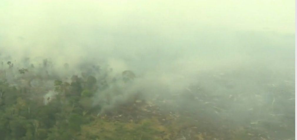 """Amazonės miškai ėmė """"keršyti žmonijai"""", išskirdami daugiau CO2, nei jo sugėrė"""