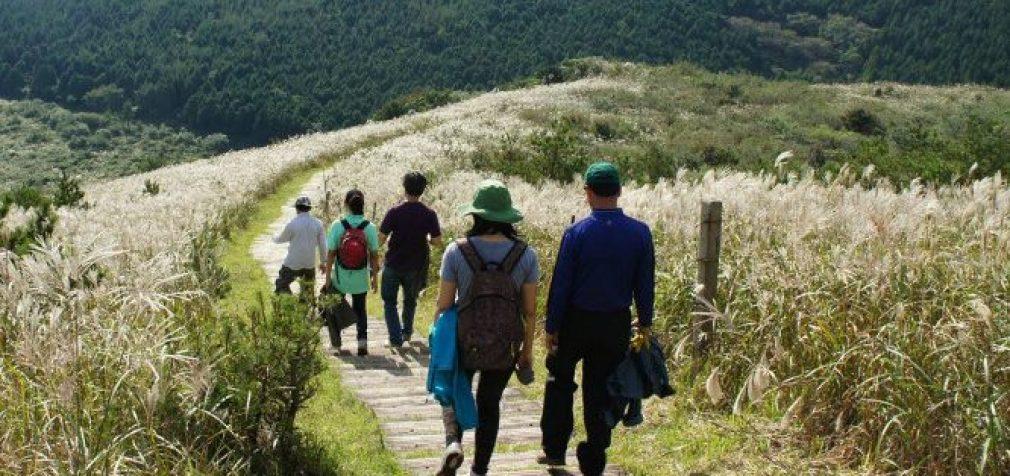 Turizmo sektorius gali rinktis iš plačios pagalbos priemonių pasiūlos, teigia ekonomikos ministerija