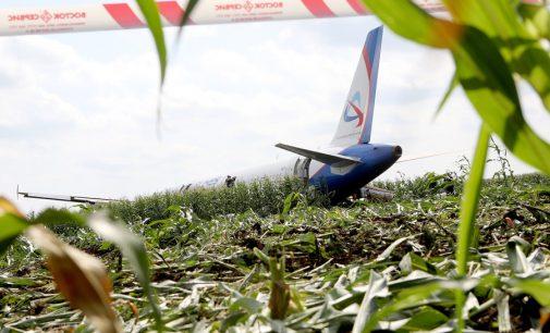 Keleivis nufilmavo pilną, nutūpusio kukurūzų lauke lėktuvo A321 skrydį
