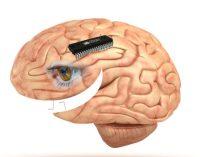 Kaip natūraliai padidinti serotonino kiekį organizme ir pagerinti nuotaiką