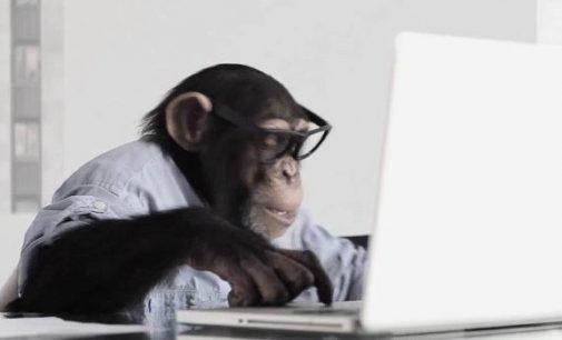 Beždžionių planeta