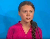 16-metės aktyvistės, Gretos Thunberg vardą nuo šiol įamžino aklas vabalas