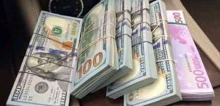 FNTT: patikrinimai turgavietėse – tik vienas iš tikrintų prekeivių nepadarė pažeidimų