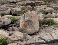 Litoterapija arba gydomieji akmenys – didelė afera?