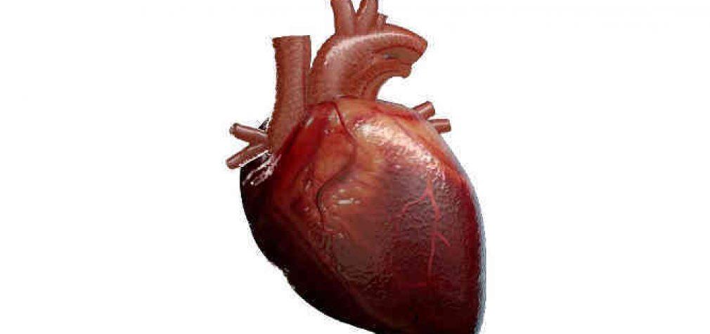 Net 80 proc. patikrintų ligoninių laboratorijų neužtikrino nepertraukiamo darbo miokardo infarkto atveju