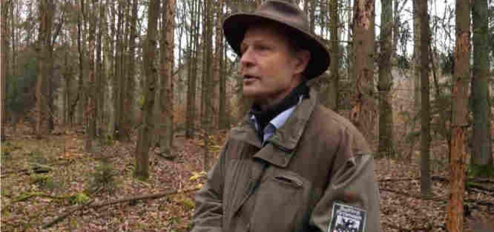 Mirštančius Vokietijos miškus bandys gelbėti kariškiai