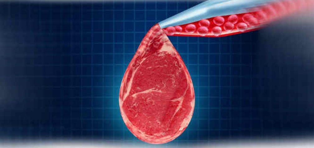 """""""Z"""" kartos atstovai nepasirengę valgyti dirbtinės mėsos ir nepasitiki jos saugumu"""