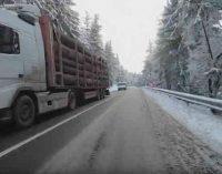 Rumunijoje, kaip ir visur, kur prie valdžios prieina verslas – nyksta miškas