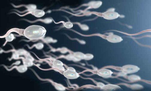 Ekspertai siūlo panaudoti mirusių vyrų spermą. Tik kaip būti numirėlio vaiku?