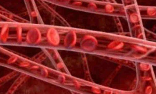 Riebalų sankaupos pasirodė esančios svarbia sveikų kraujagyslių dalimi