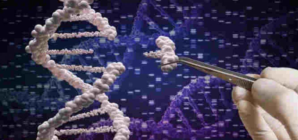 Mokslininkams pavyko išgydyti aklumą genų redagavimo technologijos dėka