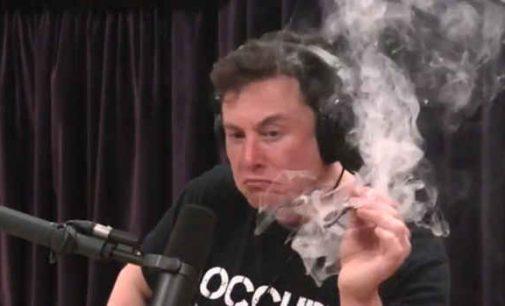 """Elonas Muskas: """"Kolegija reikalinga pramogai, o ne įgyti žinioms"""""""