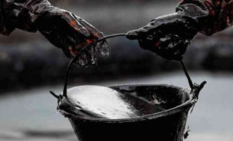 Nafta mūsų maisto grandinėje