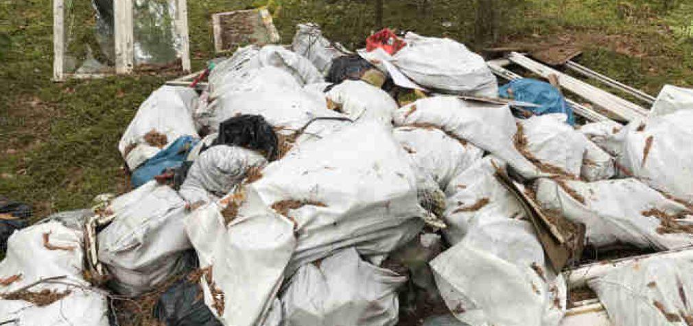 Lietuva virs švaria valstybe – importuoti komunalines ir pavojingąsias atliekas bus draudžiama