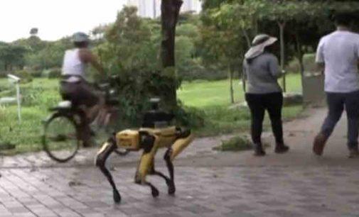Robotas Spotas prašo laikytis socialinės distancijos ir turi daugybę daviklių bei kamerų