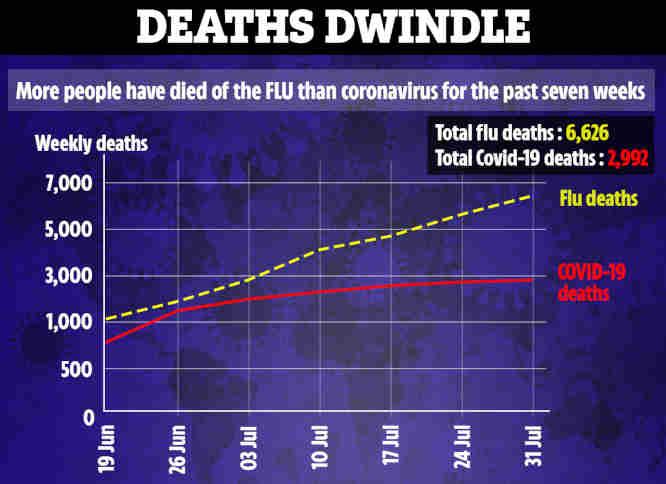 mirčių nuo gripo ir koronaviruso skaičiaus palyginimo grafikas