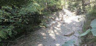 Krymas lieka be vandens. Išdžiūvo dar viena upė