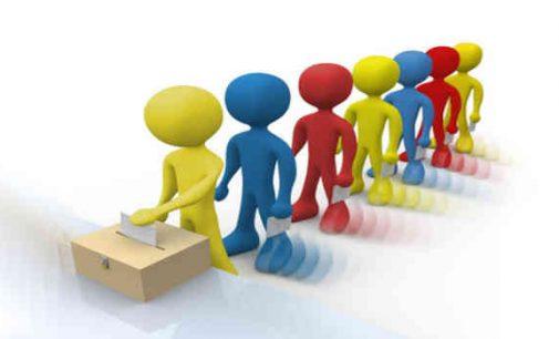 Kiguolio špargalkė balsavimams antrame LR Seimo rinkimų ture