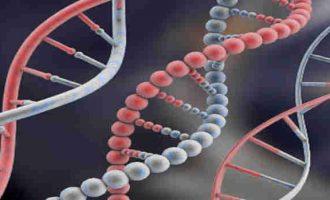 DNR nanotechnologijos – tai ne sąmokslo teorija ir jau ne fantastika