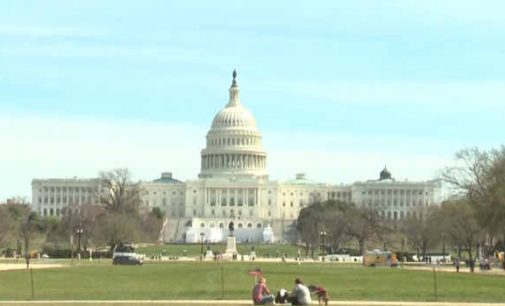 JAV prezidento rinkimai: D.Trampas padavė apeliacinį skundą dėl atmesto ieškinio Pensilvanijoje