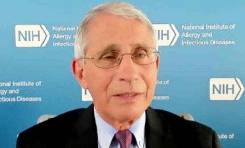 Lenda yla: Dr. Fauci palaikė pavojingus eksperimentus su virusais, esą pandemijos rizikų mažinimui