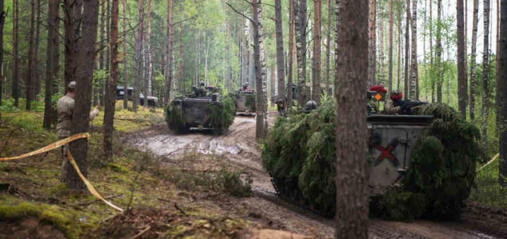 """Pratybas """"Geležinis vilkas 2021-I"""" stebės kariniai stebėtojai iš Rusijos, Baltarusijos, Suomijos ir Švedijos"""